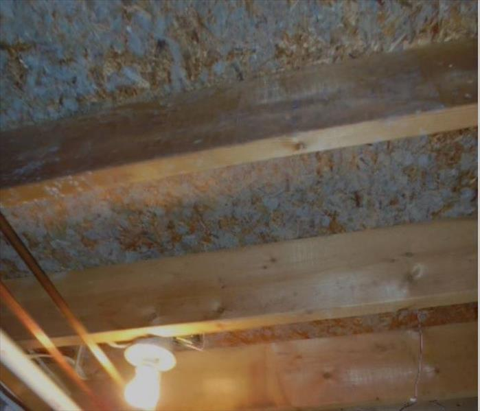 Basement Mold Remediation  Before