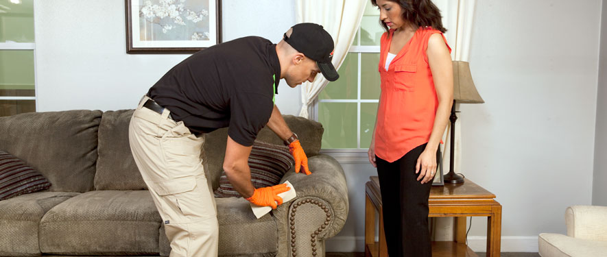 Grand Rapids, MN carpet upholstery cleaning